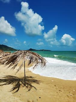 Тропический песчаный пляж у океана. атмосфера релаксации.