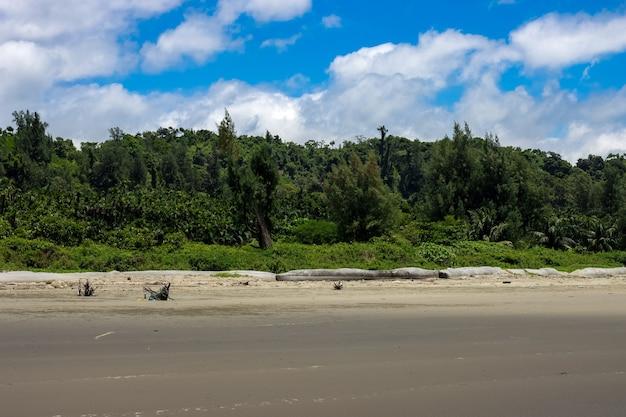 녹색 숲 근처 열 대 모래 바다 해변