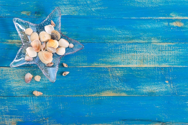 Tropical sea background. different shells, in a starfish-shaped glass bowl on the blue boards, top view. free space for inscriptions. summer theme.