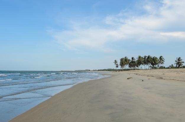 熱帯の海のビーチ、タイ