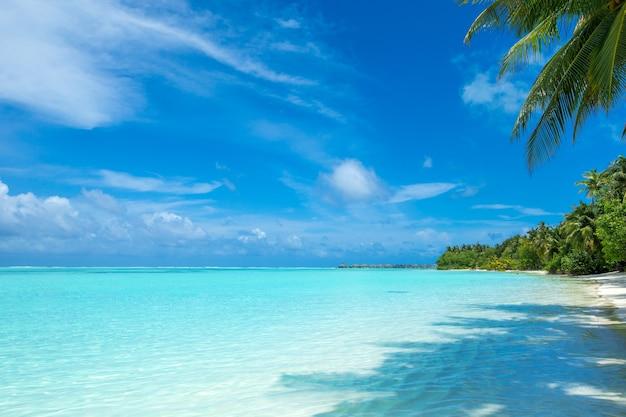 Tropical sea under the blue sky. sea landscape.
