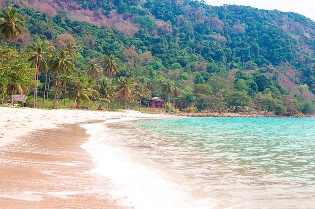 Тропический морской берег с пальмами на горе, летние каникулы на юге