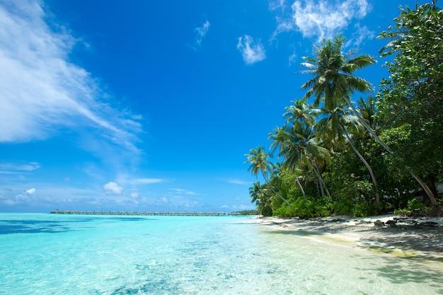 Тропическое море под голубым небом. морской пейзаж.