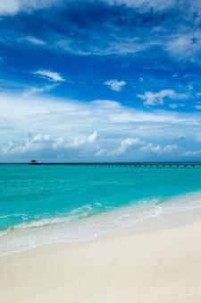 青い空の下の熱帯の海