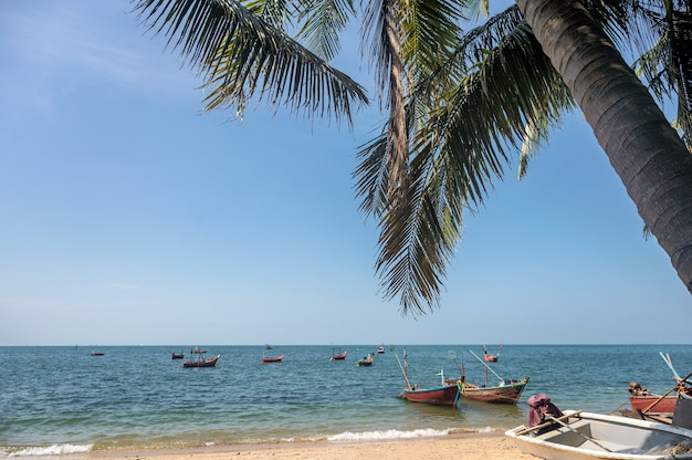 Tropical sea with coconut trees and fishing boat on the beach