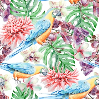 Tropical seamless pattern with birds leaves and flowers. parrot. etlingera.  monstera. orchid. watercolor illustration. hand drawn.