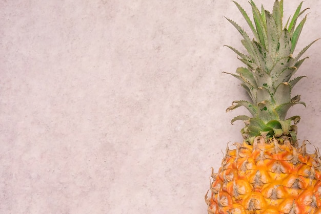 Tropical and seasonal summer fruits. pineapple with blank space backgrounds