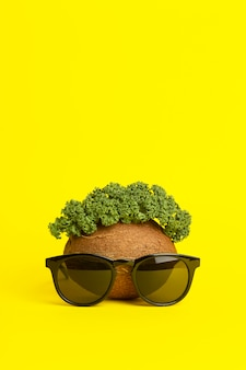 Tropical summer background. sunglasses, coconut and green leaves on a yellow background. funny face made of fruits. minimal creative concept