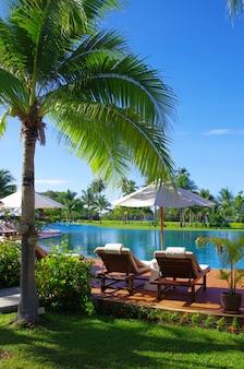 코코넛 나무와 하얀 우산이있는 열대 수영장