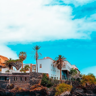 Tropical travel vacation vibes. canary island