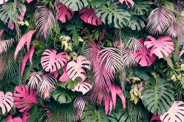 Tropical trees arranged in full background or full wall there are leaves in different sizes