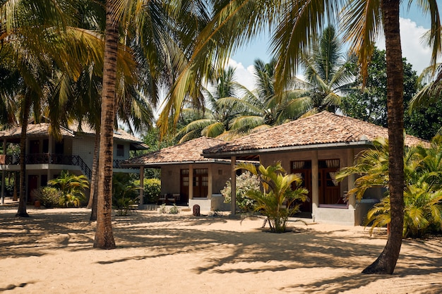 Tropical villa on beach with coconut palm tree