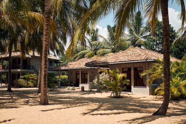 ココナッツのヤシの木がビーチにあるトロピカルヴィラ