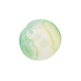 Tropical watercolor circle