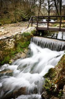 Tropical waterfall and bridge