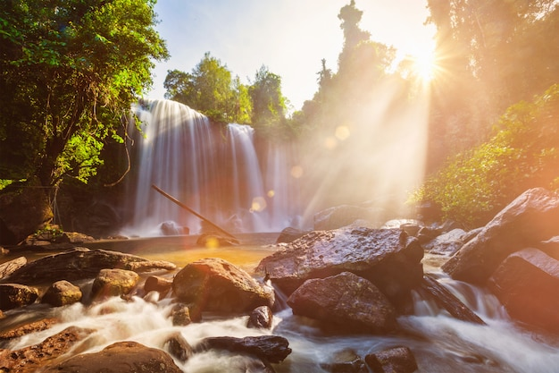朝の熱帯の滝 Premium写真