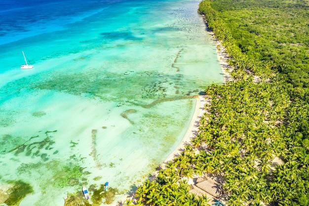 ココナッツ椰子の木と熱帯の白い砂浜。牧歌的なターコイズブルーの海岸の空撮。ドミニカ共和国、サオナ島。