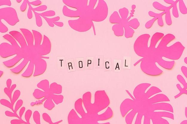 Модные розовые тропические листья бумаги и текстовая надпись tropical на розовом фоне.