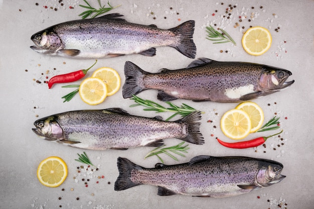 Trout fish with salt, lemon, rosemary, spices and herbs on gray background
