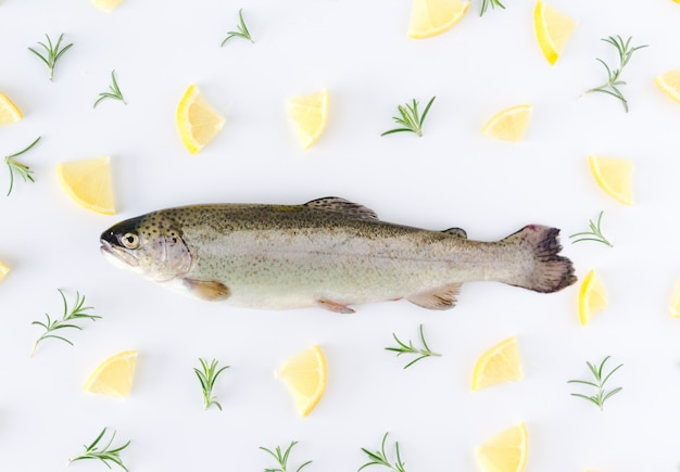Trout on white background with lemon and oregano decoration. flat lay.