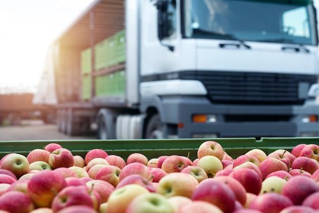 市場に出荷する準備ができているリンゴでいっぱいのコンテナを積んだトラック。