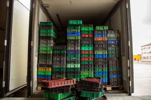 트럭 적재. 잘 익은 열매가 든 플라스틱 상자가 냉장고에 들어 있습니다. 수송.