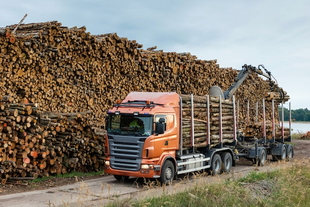 Truck unloads timber at port warehouse field.