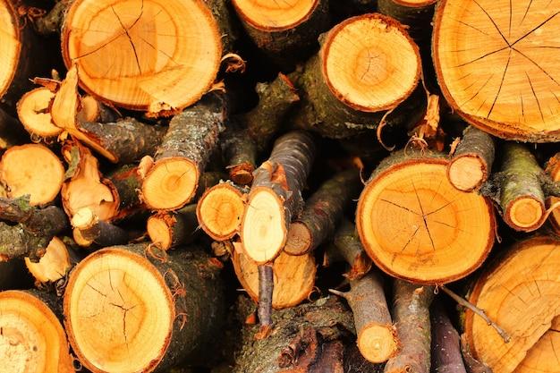 薪の枝の幹