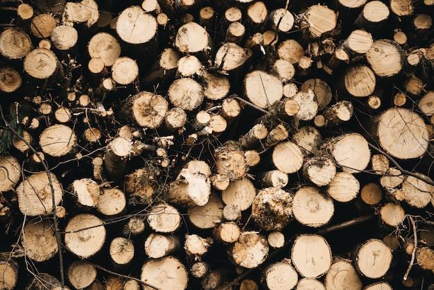 Стволы деревьев срезаны и сложены