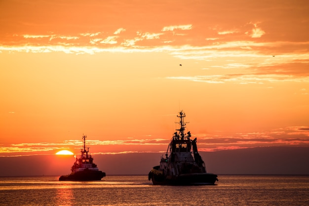 Tugs at sunset