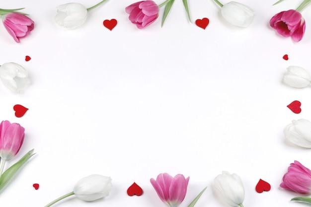 Тюльпан фон