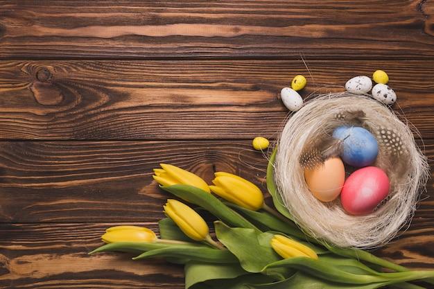 둥지 근처 튤립 꽃다발