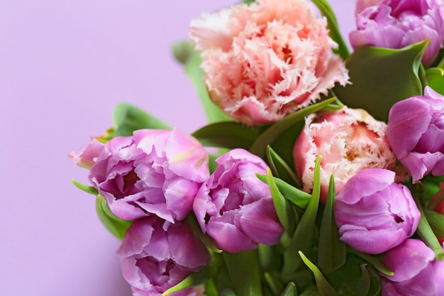Tulip bouquet. tulips on a gently purple surface. bouquet of lilac and pink terry tulips flowers on a lilac surface