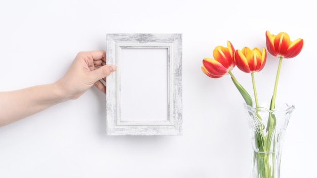 Tulip flower in glass vase with picture frame place over white background