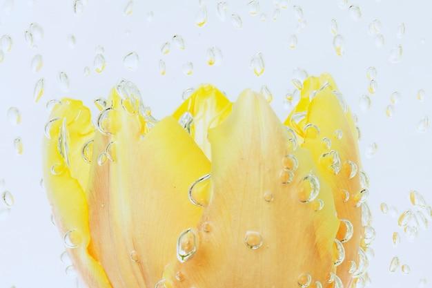 물 목욕에 기포와 튤립 꽃