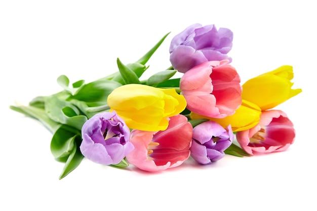 Красочный букет тюльпанов, изолированные на белой стене