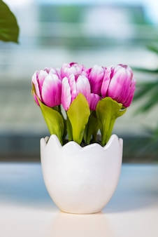 Tulip flowers in flower pot