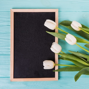 Tulip flowers with blank chalkboard on table
