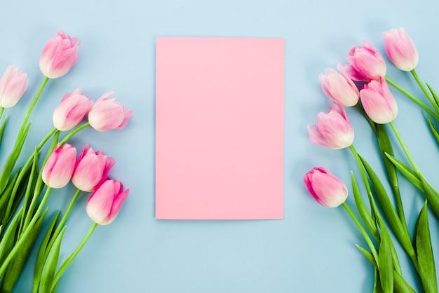 Il tulipano fiorisce con carta in bianco sulla tavola blu