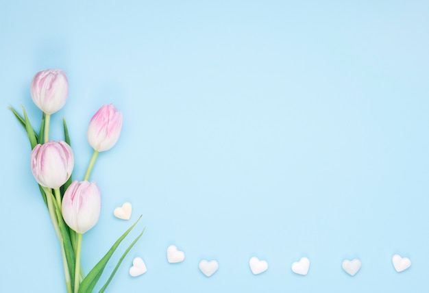 Tulip flowers with small hearts