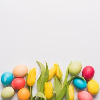 色とりどりの卵の中のチューリップ
