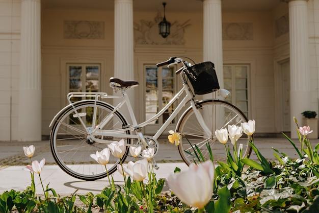 通りのチューリップと自転車。セレクティブフォーカス