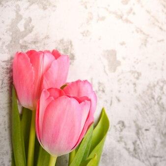 Тюльпаны яркие, свежие, розовые крупным планом.