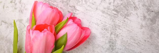 Тюльпаны яркие, свежие, розовые на светло-сером