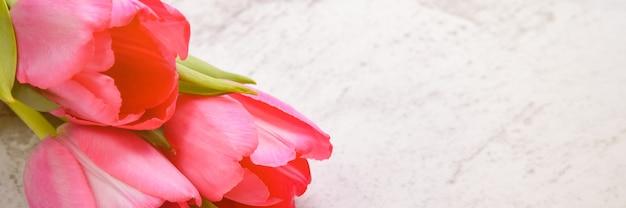 Тюльпаны яркие, свежие