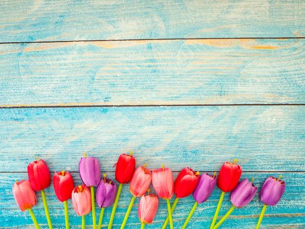 Tulips on blue wood background