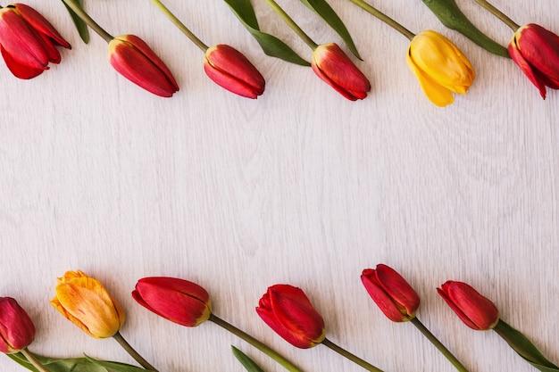 Тюльпаны. праздник со свободным местом.