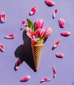 Тюльпаны в рожке мороженого на фиолетовой поверхности. вид сверху
