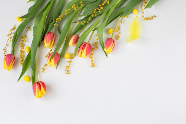 Tulips, mimosa and yellow feather.