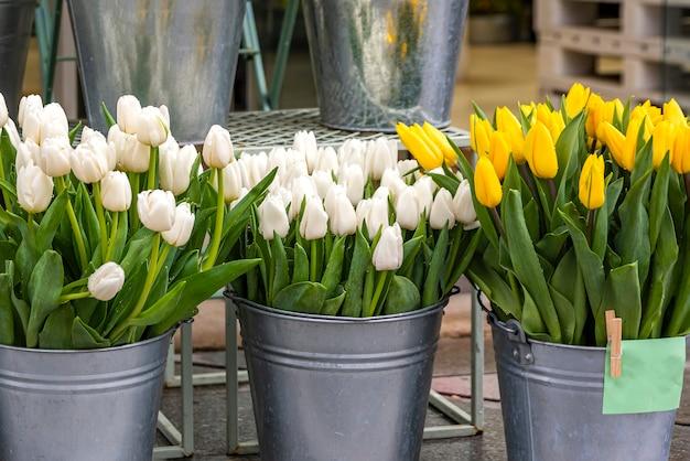 꽃집에서 판매를위한 양동이에 다른 색상의 튤립.